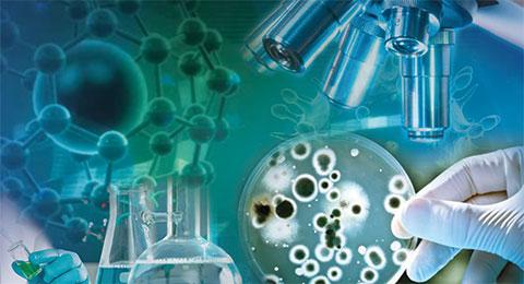 Mgr. Libor Krásný, Ph.D. zMikrobiologického ústavu AV ČR: Protein HelD je důležitý pro správnou expresi genů