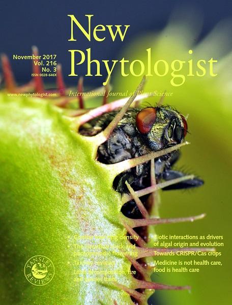 Titulná stránka kčlánku: Pavlovič A., Jakšová J., Novák O. (2017) Triggering a false alarm: wounding mimics prey capture in the carnivorous Venus flytrap (Dionaea muscipula). New Phytologist 216(3), 927-938